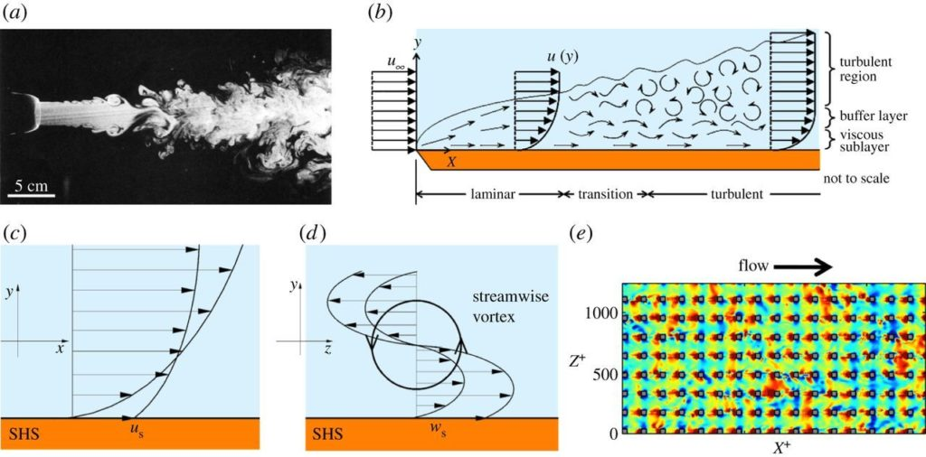 Image from article Bio inspired surfaces for turbulent drag reduction. Article by Golovin, Gose, Perlin, Ceccio and Tuteja